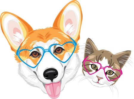 Happy welsh corgi and cute cat in glasses heart shaped Stock Vector - 137530250