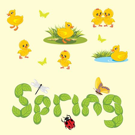 Spring background with ducklings, chickens and insects