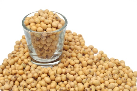 soya beans: soybean in glass isolated on white background Stock Photo