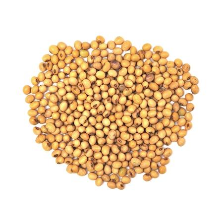 soybean on white background Stock Photo - 11080479