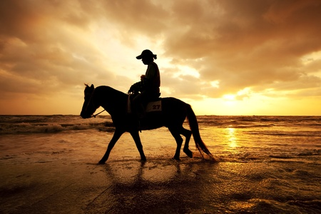 Silhouette man and horse on the beach with sunset sky environment at Thailand photo