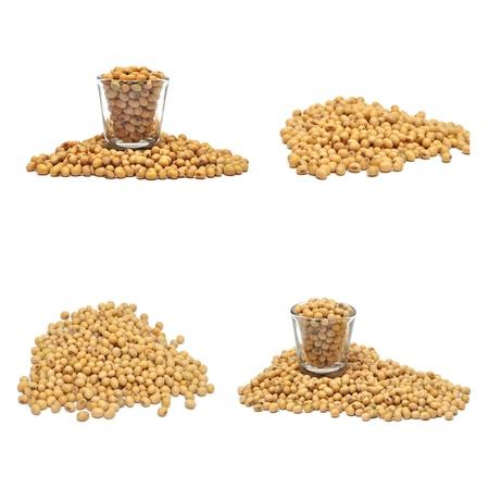 白の背景に大豆コレクション