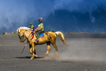 active volcano: EAST JAVA,INDONESIA-MAY 05 : Tourists ride the horse at Mount Bromo, The active volcano is one of the most visited tourist attractions on May 05,2013 in East Java, Indonesia.