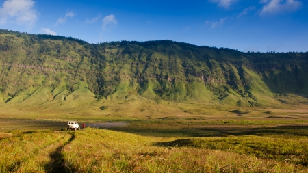 tengger: Savanna at Mount Bromo volcanoes in Bromo Tengger Semeru National Park, East Java, Indonesia