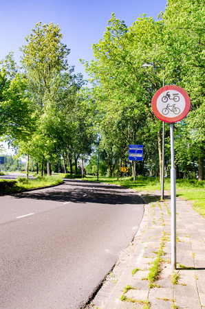 tropical tree: Road with tropical tree and fresh air in the Netherlands