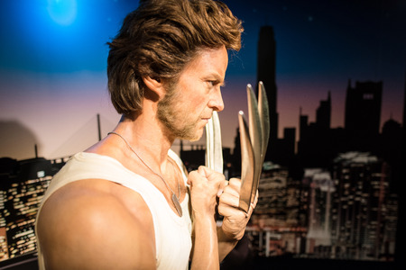 wolverine: BANGKOK -JAN 29: A waxwork of Wolverine on display at Madame Tussauds on January 29, 2016 in Bangkok, Thailand. Madame Tussauds newest branch hosts waxworks of numerous stars and celebrities
