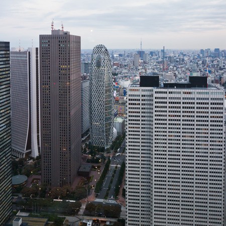 superstructure: View of Tokyo