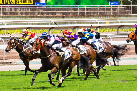Horse Race Runners and riders during a race