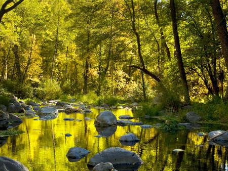 sedona: A view of Ok Creek, Sedona, Arizona in the upper canyon in the fall Stock Photo