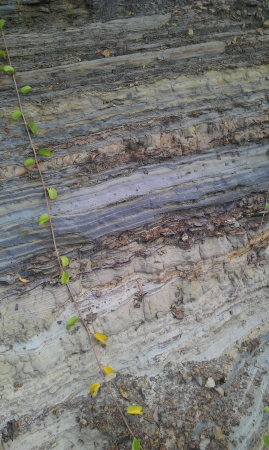 rock layers: Rock layers formed for geological study Stock Photo
