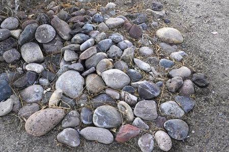 Rocks in the Dirt