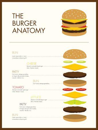 american cuisine: burger anatomy illustration