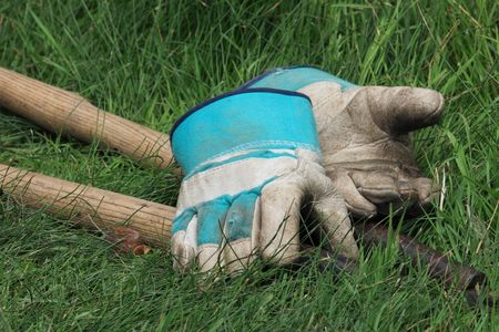 domestic task: pair of teal and white garden gloves and pruning shears resting on grass