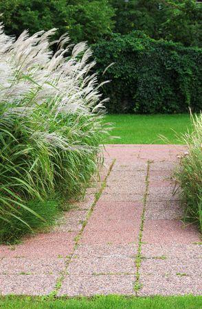 Red steen pad in een eenvoudige tuin met sier grassen waait in het koud kunstje