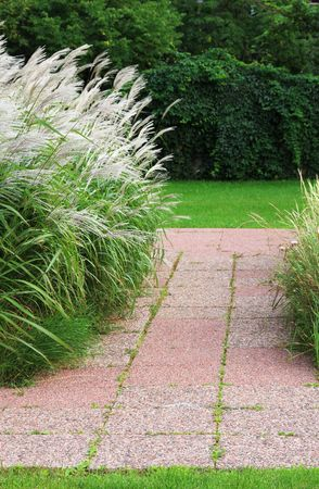 Red stone path in a simple garden with ornamental grasses blowing in the breeze