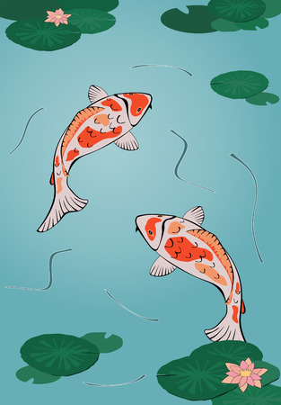 pez carpa: dos japon�s koi en estanque de nataci�n con waterlilies