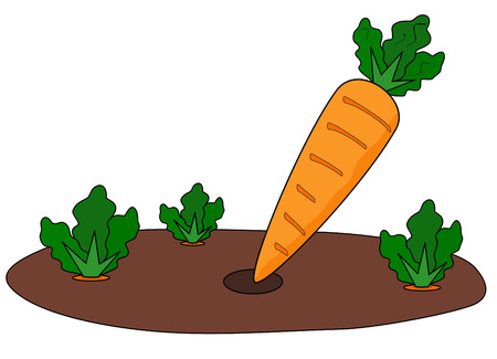 cartoon illustration of fresh picked carrot in vegetable patch