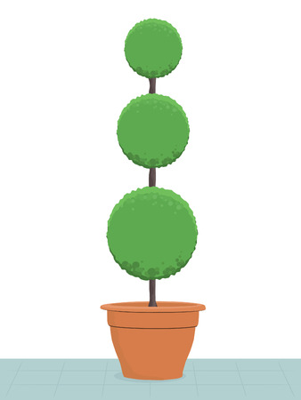topiary tree in clay pot on patio Vectores