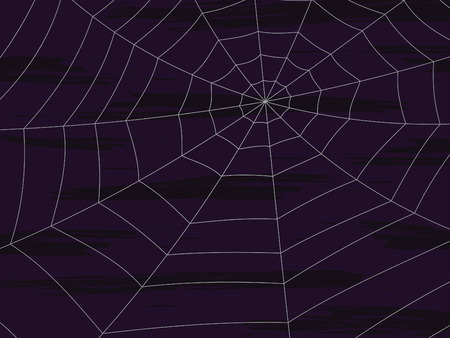 spider web illustration on dark purple textured background Ilustração