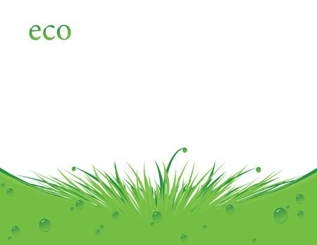 green ecology background with grass and water drops Vectores