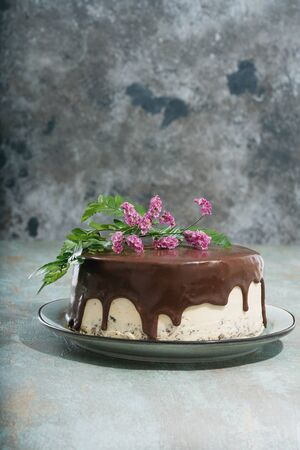 Homemade chocolate cake with peanut butter cream layers decorated with flowers on the top over a dark rustic background. Side view.  Standard-Bild