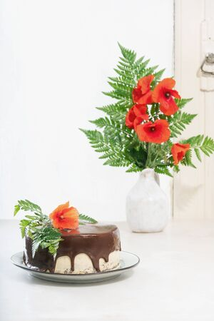 Homemade chocolate cake with peanut butter cream layers decorated with poppy flowers over a white background. Side view. Standard-Bild