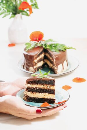 Slice of homemade chocolate cake with peanut butter cream layers decorated with poppy flowers and petals in male hands over a white background. Selective focus.