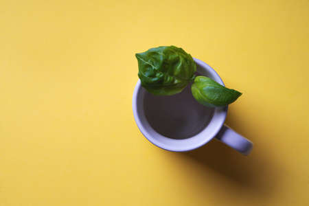Fresh organic basil in ceramic cup over a yellow paper background. Minimal;istic food concept. Pop Art. Top View. Flat Lay