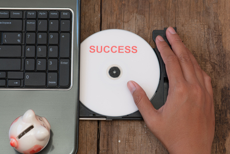 dvds: Success concept with compact disk and piggy bank