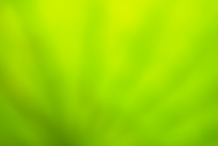abstract green natural background photo