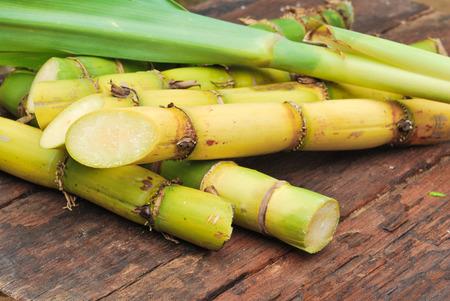 Close up Sugarcane photo