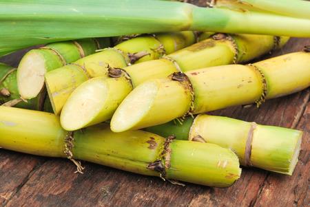 Close-up van het suikerriet