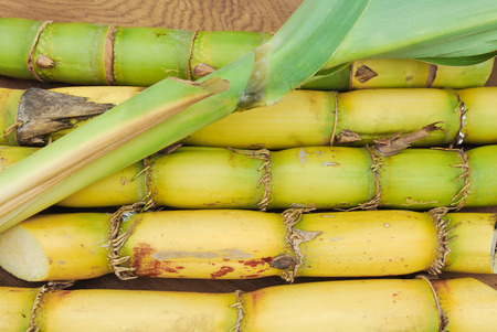 Close-up van de suiker en suikerriet