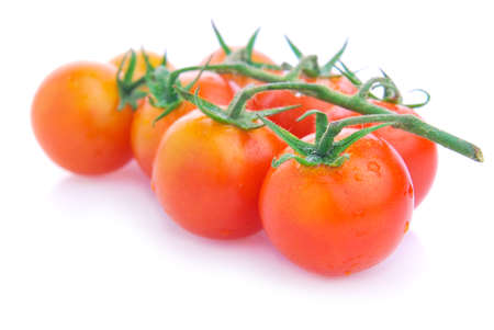 Closeup of cherry tomatoes on the vine photo