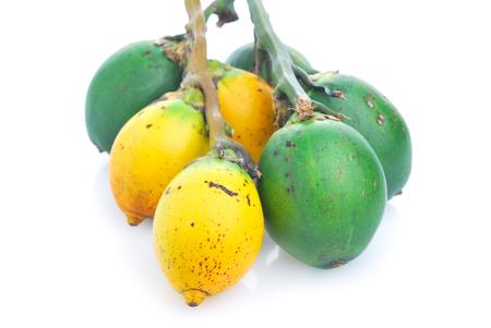 Betel nut fresh betel palm, Areca palm (Areca catechu Linn.) Imagens