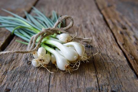 cebolla blanca: Pila de cebolleta fresca en la mesa de madera