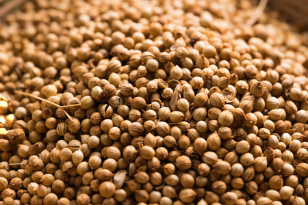 Coriander seeds on a wooden background , Food herbal aroma ingredient . Stock Photo