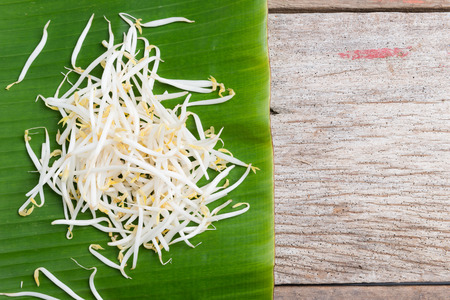 Bean sprouts on wooden background Stock Photo