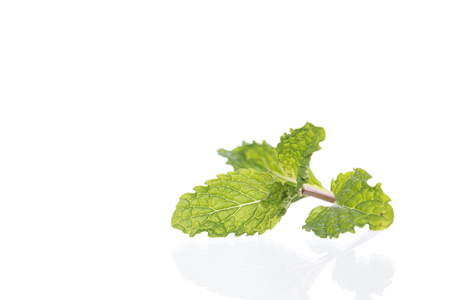 Fresh raw mint isolated on white background Stock Photo