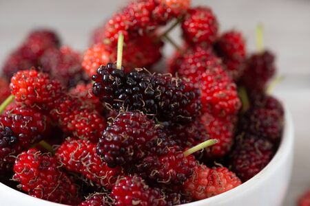 Fresh Mulberrys healthy fruit source of vitamin. Red mulberry in Thailand.