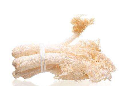Dried Tropical Stinkhorn mushroom, Phallus indusiatus , Bamboo mushroom isolated on white background