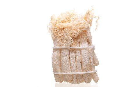 Dried Tropical Stinkhorn mushroom, Phallus industrial , Bamboo mushroom isolated on white background