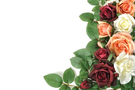 Framework from colorful roses, isolated on white photo