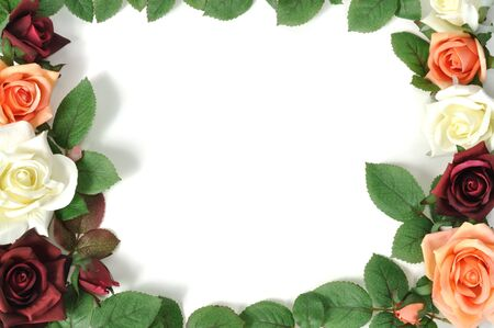 floral border frame: Framework from colorful roses, isolated on white