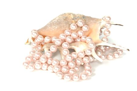 glister: Pearl necklace and beautiful  seashell, isolated on white Stock Photo
