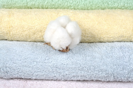Different shades of  towels and Stem of ripe cotton  photo