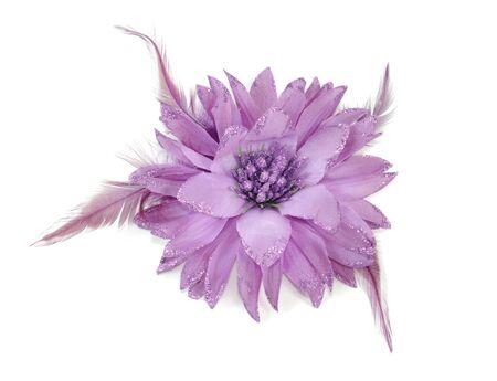 cintillos: Banda de pelo de flor en aisladas sobre fondo blanco