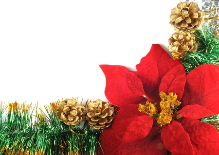 Christmas docoration with poinsettia flower and copy-space photo