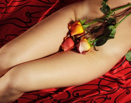 Beautiful woman body with roses, on red background Stock Photo - 11888217