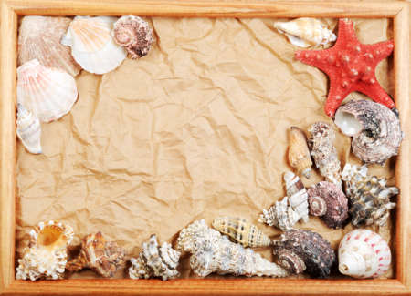Frame from seashells on old paper, with copy space Stock Photo - 13522655